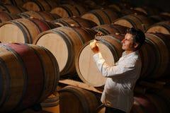 Vino de la prueba del hombre en un sótano-Winemaker Fotos de archivo libres de regalías