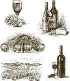 Vino de la uva Imagenes de archivo