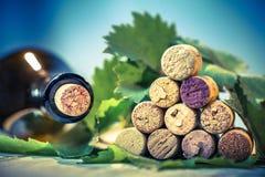 Vino dei sugheri con le foglie dell'uva Immagini Stock