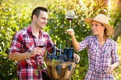 Vino dell'assaggio del viticoltore delle coppie Fotografia Stock