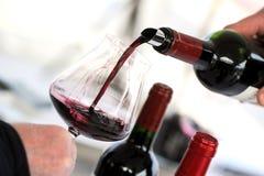 Vino dell'assaggio in una serra di viti Immagine Stock