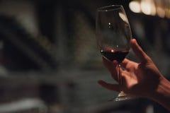 Vino di versamento della tenuta del sommelier maschio in bicchieri di vino dal gambo lungo Fotografia Stock Libera da Diritti