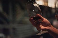 Vino di versamento della tenuta del sommelier maschio in bicchieri di vino dal gambo lungo Immagini Stock Libere da Diritti