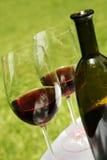 Vino e bottiglia Fotografia Stock Libera da Diritti