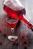 Vino rojo con las bayas de la pasa roja Imágenes de archivo libres de regalías