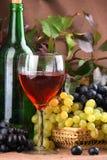 Vino rojo de la composición del vino Imagen de archivo libre de regalías