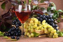 Vino rojo de la composición del vino Imágenes de archivo libres de regalías