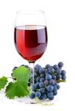 Vino rojo en vidrio con las uvas Imagenes de archivo
