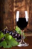 Vino rojo en vidrio y uva en la placa con la decoración de la vid imagen de archivo libre de regalías