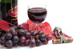 Vino rojo y botella de vino Foto de archivo