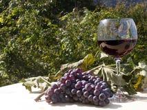Vino rojo y uvas Fotografía de archivo libre de regalías