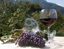 Vino rojo y uvas Fotos de archivo