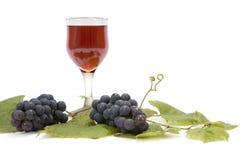 Vino rojo y uvas en la hoja Fotos de archivo libres de regalías