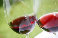 Vino rosso Fotografie Stock