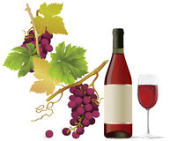 Vino rosso. illustrazione di stock
