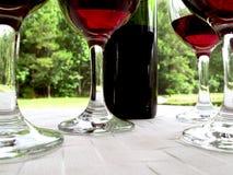 Vino rosso con 4 vetri Immagini Stock Libere da Diritti