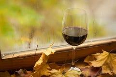 Vino rosso di autunno Fotografia Stock