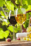 Vino rosso e bianco Fotografia Stock