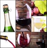 Vino rosso e bianco con il collage del champagne Immagine Stock