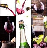 Vino rosso e bianco con il collage del champagne Fotografia Stock Libera da Diritti