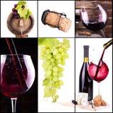 Vino rosso e bianco con il collage del champagne Fotografia Stock