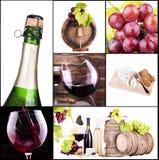 Vino rosso e bianco con il collage del champagne Immagini Stock