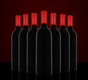 Vino rosso e una bottiglia Immagine Stock Libera da Diritti