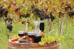 Vino rosso ed uva Fotografie Stock Libere da Diritti