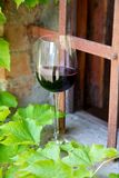 Vino rosso in un vetro di vino immagini stock libere da diritti