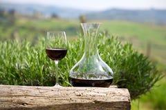 Vino rosso in una caraffa del vino ed in un vetro di vino Immagini Stock Libere da Diritti