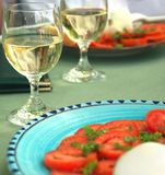 Vino, tomates y queso Foto de archivo libre de regalías