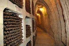 Vino vault-001 Immagine Stock Libera da Diritti
