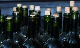vino veritas Стоковые Фотографии RF