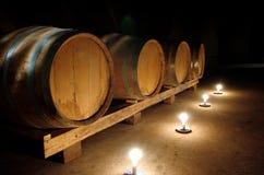 vino veritas Стоковые Изображения