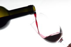 In vino veritas Photos libres de droits