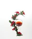 Vino y flores Imagen de archivo libre de regalías