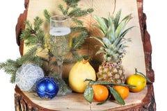 Vino y frutas en el bosque Imágenes de archivo libres de regalías
