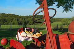Vino y pan franceses del queso Imagen de archivo