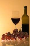 Vino y uvas Imagen de archivo libre de regalías