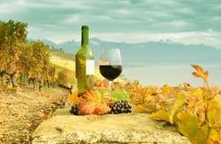 Vino y uvas contra el lago geneva Imagenes de archivo