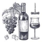 Vino y uvas fijados Imágenes de archivo libres de regalías
