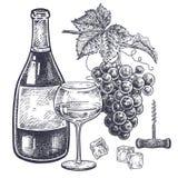 Vino y uvas fijados Fotografía de archivo libre de regalías