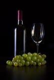 Vinobianco i bottiglia Arkivfoton