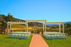 Vinodling för bröllopmötesplats utomhus fotografering för bildbyråer