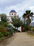 Vinodling i Guadalupe Valley Arkivbilder