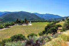 Vinodling längs den Monterey County väghuvudvägen G16 royaltyfria foton