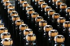 Vinodlingbransch, flaskor och lock Fotografering för Bildbyråer