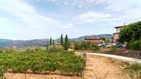 Vinodlingbyggnad i Chiantiregionen, Toskana Vingårdar och cypressträd omkring Royaltyfria Bilder