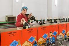 Vinodlingen Abrau-Durso inom, mousserande vin Royaltyfri Foto