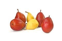 Vinous και κίτρινα αχλάδια στο λευκό Στοκ Φωτογραφία